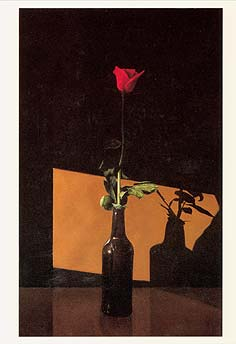 "Postcard: ""Still Life with Rose"""